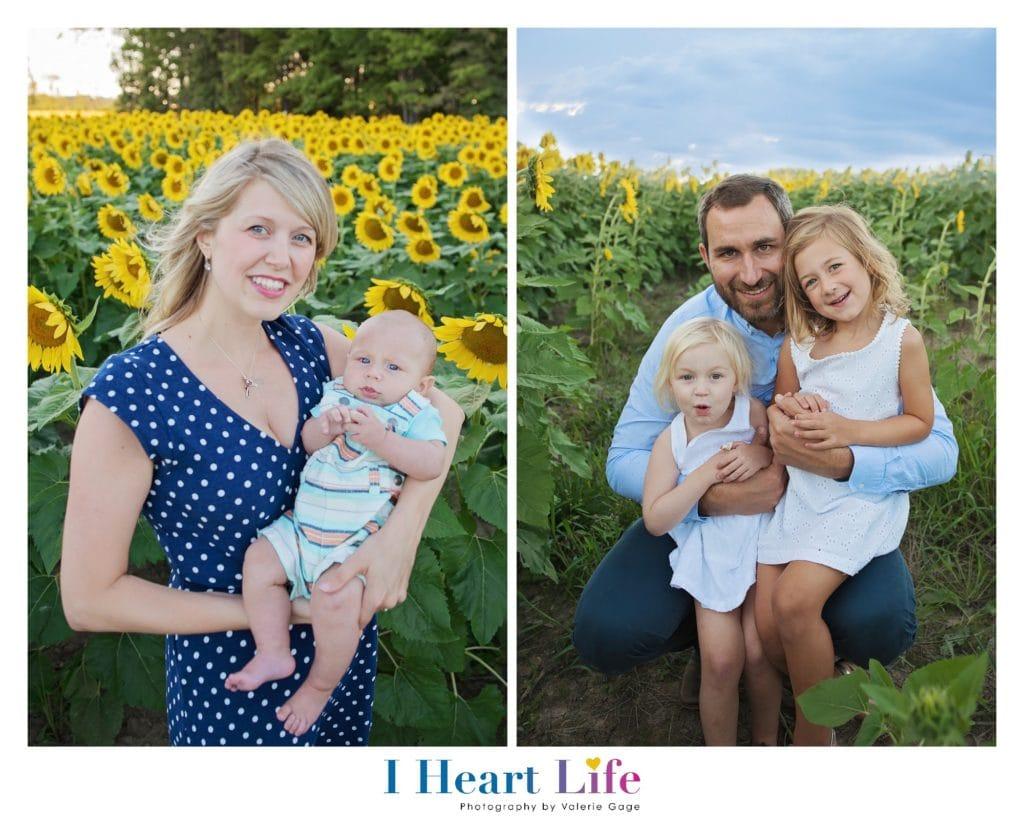 Family Photo Session at Sunflower Field, Avon Ohio