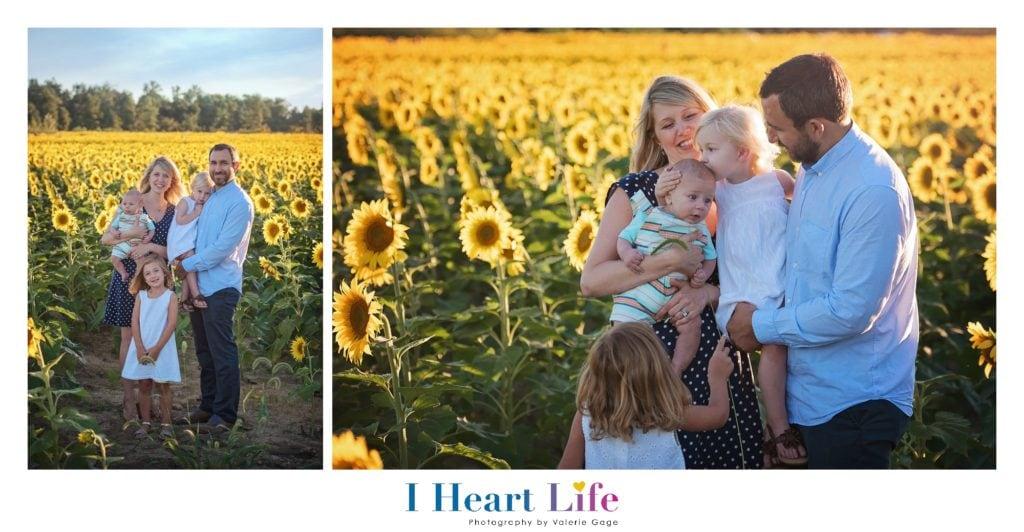 Family Photos at Avon Sunflower Field